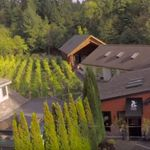 Muse Winery, Jane  Ellmann